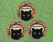 Halloween, Happy Halloween, Cat Stickers, Halloween Stickers, Trick or Treat