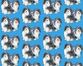 Havanese puppies on a blue background fabric