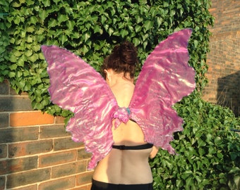 Rose pink adult butterfly wing with aqua swirls