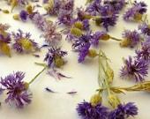 Cornflowers, Bachelor Buttons, Edible Flowers, Wedding, Blue Flowers, Herbal Tea, Foodcrafting, Item # 0115, Confetti, Petals, Dried Flower
