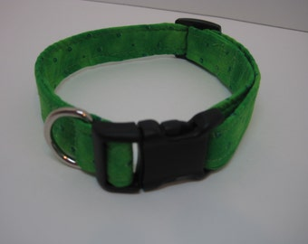 Green and Blue Dog collar