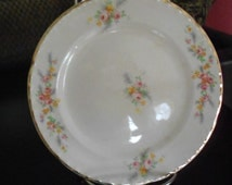 Vintage Crooksville China Dessert Plate, CRO26, Pink Roses, Yellow Flowers and Gray Fern with Gold Rim