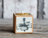 Botanical Candleblock: No. 4, Cobblestone Fig. 13 - by Peg and Awl