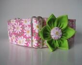Pink Martingale Collar and Matching Collar Flower, 2 Inch Martingale Collar, Pink Dog Collar, Daisy Dog Collar, Floral, Greyhound Collar