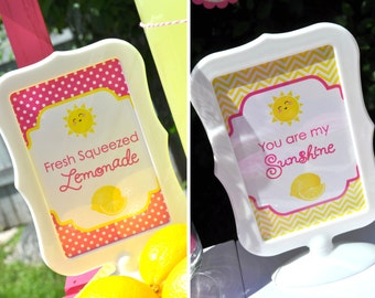 Lemonade and Sunshine Birthday 4x6 Signs - You Are My Sunshine - Pink Lemonade Birthday Party Decorations - (2) 4x6 Printed Signs