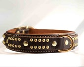 Strong Leather Dog Collar with Studs - Padded Leather Dog Collar - Pit Bull Dog Collar for Large Dogs - Many Colors Available