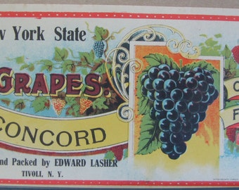 1920s 30s New York Stae Black Concord Grapes Label Original