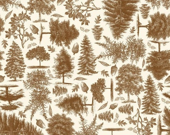 Trail Mix Nature in Brown by Riley Blake Designs