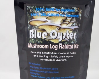 Blue Oyster Mushroom Log Habitat Kit For Terrariums Vivarium Reptile Tanks