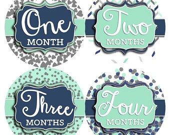 FREE GIFT, Baby Month Stickers, Boy, Girl, Gender Neutral, Baby Month Stickers, Monthly Baby Stickers, Milestone Sticker, Blue Navy Mint