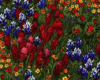 TEXAS WILDFLOWERS Michael Miller fabric by the 1/2 yard CX0400-Mult bluebonnets, paintbrush, flowers
