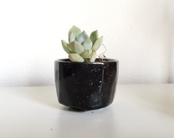 Black glossy Miniature Succulent Planter Pot Kits