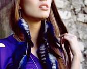 Long Feather Earrings - Royal Blue