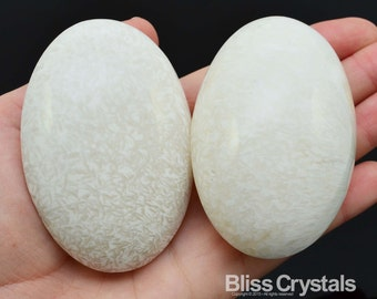 """1 Jumbo SCOLECITE 2.7"""" Palm Stone White Crystal Stone Polished Natural Healing Crystals and Stones #S13"""