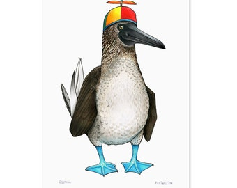 Blue Footed Booby in a Pinwheel Beanie - A3 Print