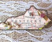 Kentucky Kool State Brooch