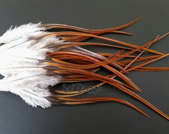 Brown Feathers Crafts Supplies Brown Craft Feathers Hair Supplies Real Feathers Jewelry Supplies Brown Feather Supplies Qty15