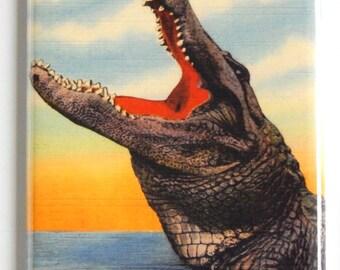 Alligator Drop In To Florida Fridge Magnet