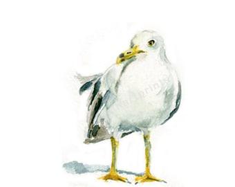 Watercolor Seagull , Seagull Print