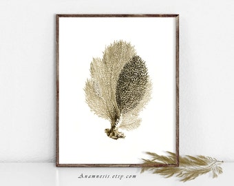 Sea Coral Art Print - SEA CORAL in SEPIA - Instant Download - printable sea life illustration for framing, totes, fabric, jewelry, cards