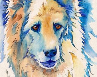 dog, shepherd, German, pet, portrait, watercolor, abstract, painting, commission, colorful, cat, art, traditional