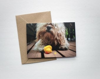 Dog Greeting Card - Blank Inside