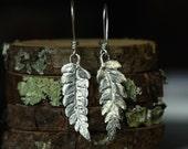Fern Leaf Earrings, Sterling Silver Leaf Earrings by Mary Cappy