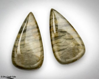 Jasper Matched Pair cabochons