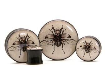 Beetle Plug - Sizes 10mm to 30mm