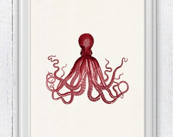 Gorgeous Red octopus no.16- Wall decor poster , sea life print- Marine  sea life illustration A4 print- vintage natural history SPOJ062