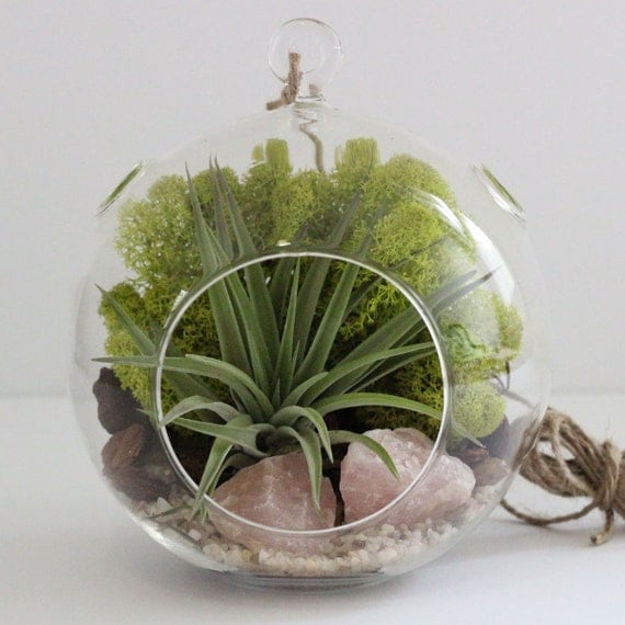 Air Plant Terrarium Kit with Rose Quartz and Chartreuse Moss || Gifts for the Gardener || Large Round Hanging