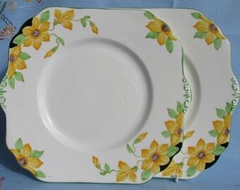 Pair of bright hand painted Gladstone China cake plates