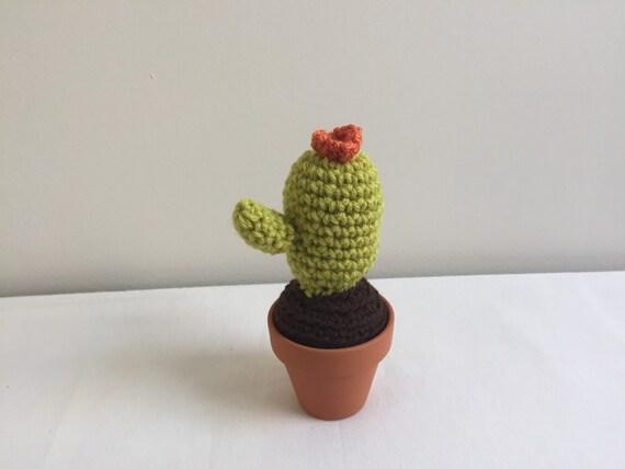 Tecnica Amigurumi Cactus : faux cactus amigurumi cacti cactus cacti fake by ...