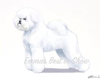 Bichon Frisé Dog - Archival Fine Art Print - AKC Best in Show Champion - Breed Standard - Non-Sporting Group - Original Art Print