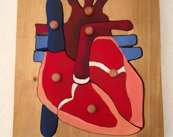 Montessori Anatomy of the Heart Puzzle