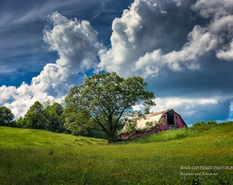 Wisconsin Barn, Nature Photography, Summer Day, Fine Art Print, Blue White Green, White Clouds, Blue Sky, Oak Tree, Home Cabin Decor