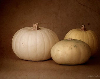Pumpkin Photography, Still Life Photo Print, Fall Kitchen Decor, Autumn Decor