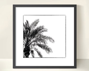 Palm Tree Silhouette. Monochrome. Nature Photography. Black & White Print by OneFrameStories.