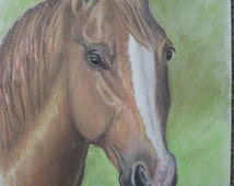 Bay Horse Portrait (pastel)/horse art/pastel/graphic art/