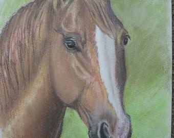 Bay Horse Portrait (pastel)/horse art/pastel/graphic art/
