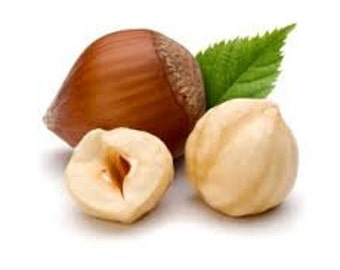 Hazelnut Premium Fragrance Oil Available In Several Sizes