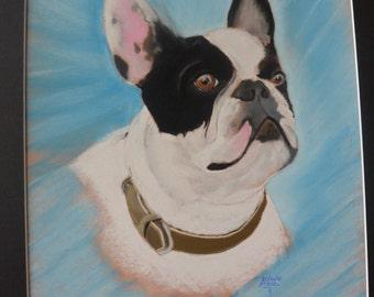"pastel ""Bulldog"" 30x40cm size"