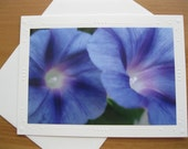 Photo Greeting Cards, Birthday Card, Blue Morning Glory, Card for Her,Wedding Card, Miss You Card, Anniversary Card, Thank You,Get Well Card