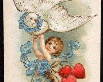 Sweet little cupid Valentine Love message by dove. Colorful vintage postcard 1907 FREE SHIP