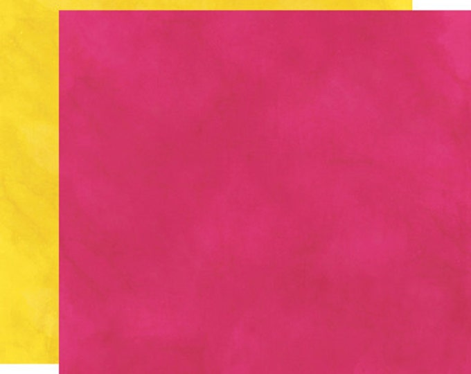 2 Sheets of Echo Park Paper HERE & NOW 12x12 Scrapbook Paper - Pink/Yellow