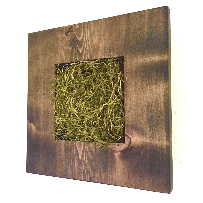 Do-It-Yourself DIY Vertical Gardens / Living Wall / Wall