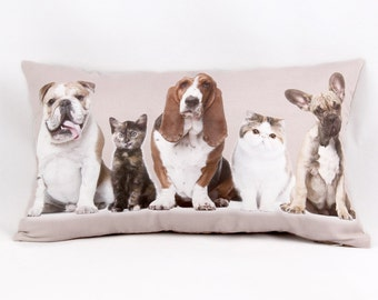 Dogs and Cats Cushion