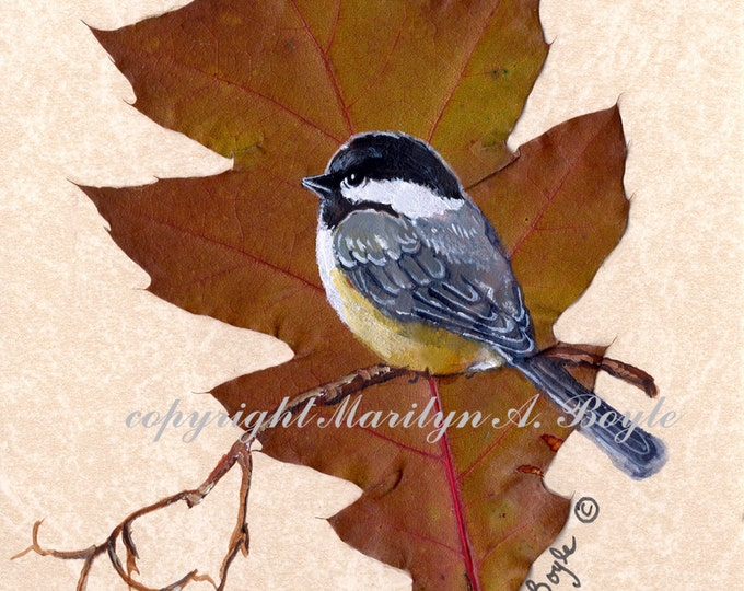 ACEO Card - CHICKADEE on LEAF; oak leaf, run of 10, 2.50 x 3.20 inches, Limited Edition print, signed & numbered, nature, song bird,