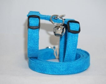 Aqua Ferret Harness and Leash Set