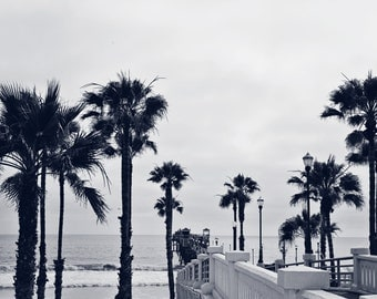Blue Toned, Black and White, Ocean Pier Photography, Oceanside California Palm Trees